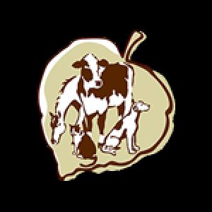 VBMA logo
