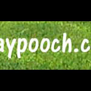 graypooch