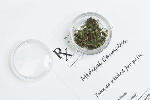 dosage cannabis dog cat pets hemp